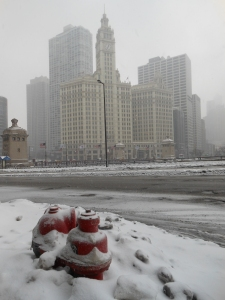 Chicago Snow-Monday 008