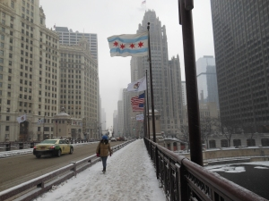 Chicago Snow-Monday 013