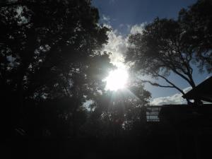 Sun Halo 001