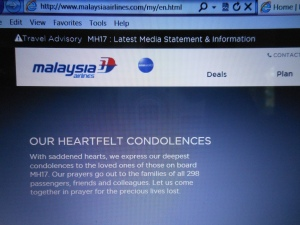Malaysia Airlines 002
