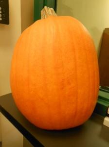Halloween, HCSO 001