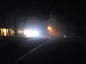 Fog 002