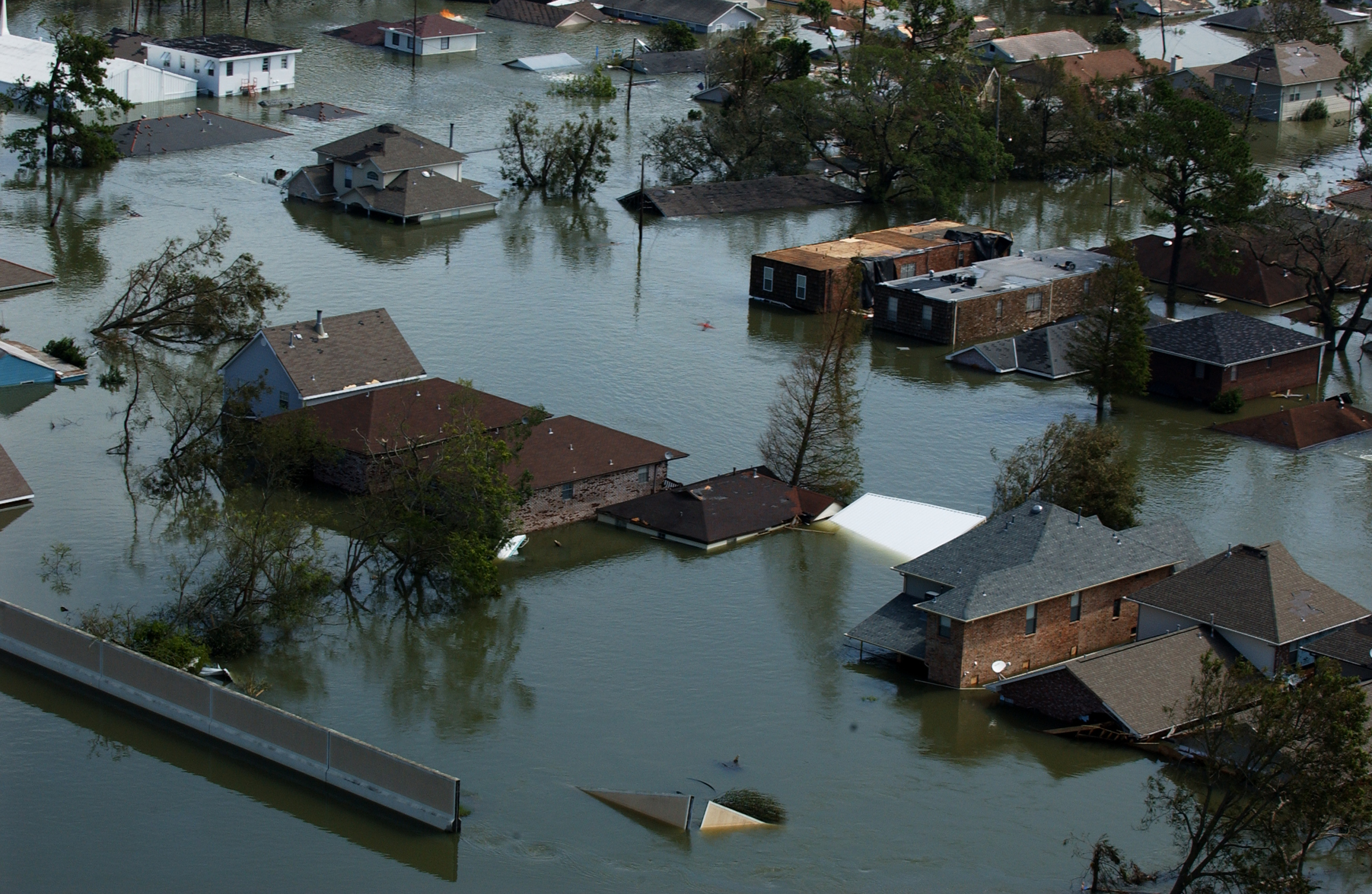 Hurricane Katrina's Tenth Anniversary | News Blog