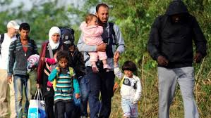 Hungarian Refugee Crisis