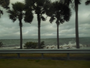 Tampa Weather Today 022