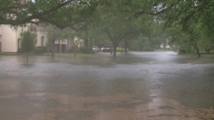 Newcastle in Bellaire - flooding