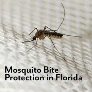 mosquito-bite-prevention-img